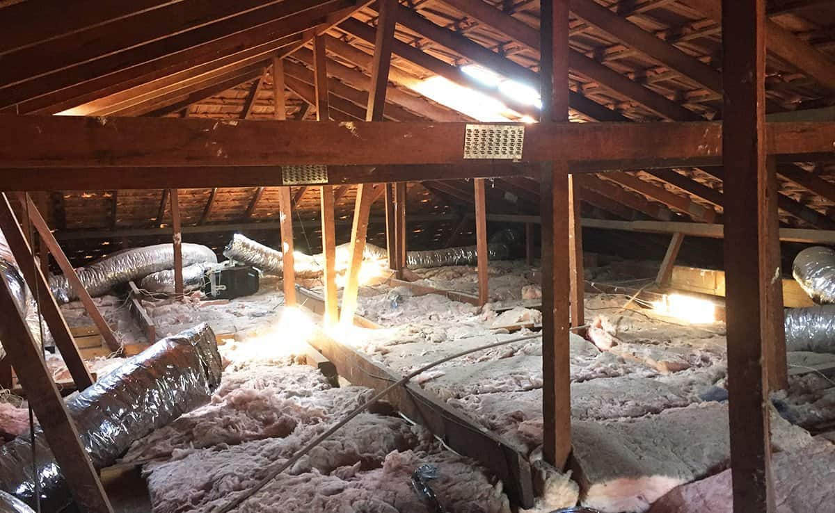 a1 attics project coogee before